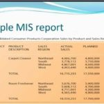 MIS Report Format in Excel (Examples)